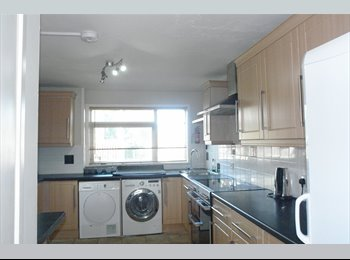 6 Bedroomed house with 2 rooms available Student House