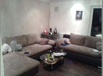 single room 4 rent