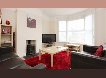 EasyRoommate UK - Superb Double Non-Smoking Room, Exeter - £495 pcm