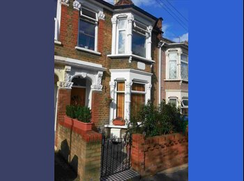 Designer double in refurb Walthamstow house