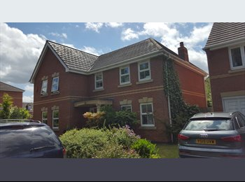 Double Room Available In Executive 5  Bed Detached House