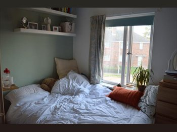 Double room in recently renovated house share