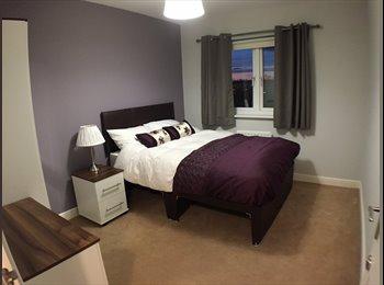 EasyRoommate UK - NEW REFURBISHED! Fantastic professional houseshare - Colchester, Colchester - £520 pcm