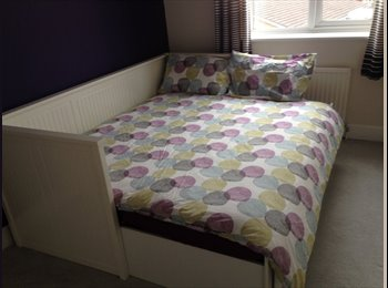 EasyRoommate UK - Newly decorated double room in lovely house, Speedwell - £550 pcm
