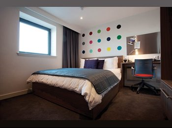 Student Accommodation: Gallery Apartaments, Classic Studio...