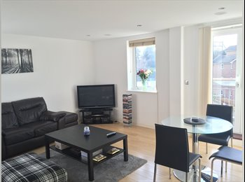 EasyRoommate UK - Double room with own bathroom, in bright modern flat.  - Chelmsford, Chelmsford - £615 pcm