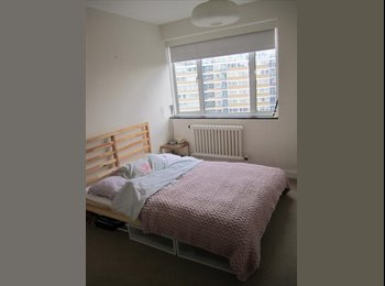 Double Room in Spacious Pimlico Flat