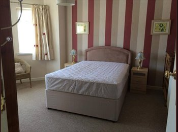 Two Double rooms to let in a beautifully furnished house