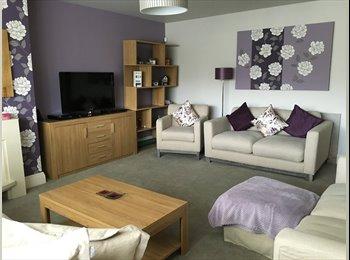 EasyRoommate UK - Double room to let - Hyde, Tameside - £400 pcm