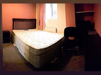 Beautiful Double Room. 2 Bed House. Turnpike Lane