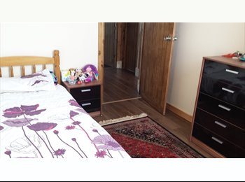 Double room *NEWLY RENOVATED* Professionals females