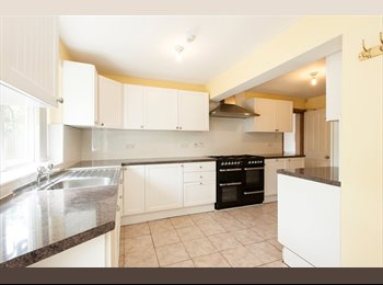 6 Bed Detached Close to UoN & QMC
