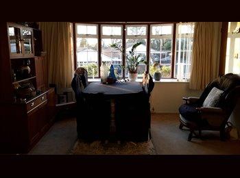 EasyRoommate UK - Comfortable double room to rent in quiet cul-de-sac  - Beoley, Redditch - £410 pcm