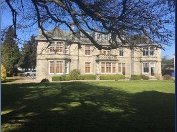 EasyRoommate UK - Summer Accommodation - St Andrews  - Dundee, Dundee - £560 pcm