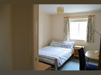 EasyRoommate UK - Double bed en-suite bedroom on shared flat to rent, Plymouth - £325 pcm