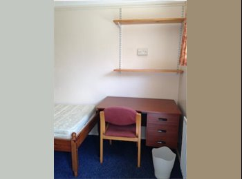 EasyRoommate UK - Short Term (May to July) Single Room to rent in Colchester Town! Rent Negotiable!  - Colchester, Colchester - £280 pcm