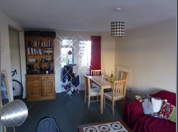 Bright Double Room in Central Area *Available in October*