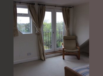 Beautiful bright and modern room to let in luxury house