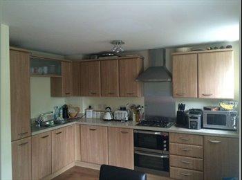 EasyRoommate UK - Large Stunning Furnished Double Room  - Maidenbower, Crawley - £550 pcm