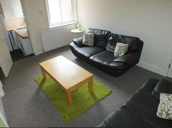 EasyRoommate UK - Spacious 4 bedroom maisonette with 2 bathrooms - Heaton, Newcastle upon Tyne - £350 pcm