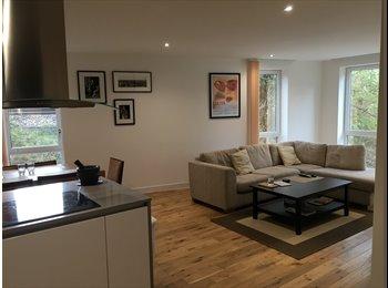 EasyRoommate UK - Lovely Double Room in Modern Flat -  Wandworth Town - Battersea, London - £1,000 pcm