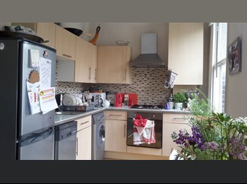 8 month let. Great flat. Great location. Great flatmate!...