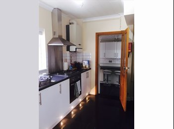 EasyRoommate UK - Professional house share next to the RD & E Hospital - Exeter, Exeter - £477 pcm
