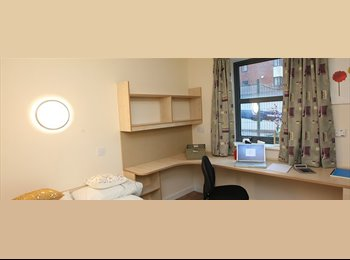 EasyRoommate UK - £100pw double ensuite room available - Kensington, Liverpool - £400 pcm