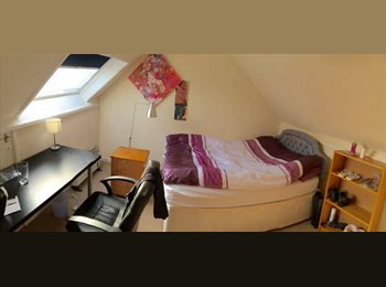 LARGE ROOM IN HAMMERSMITH/BARONS COURT