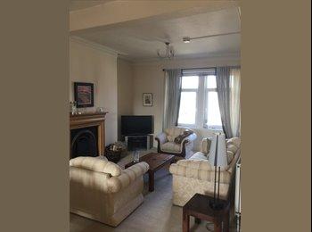 Large double room in beautiful Victorian-era flat