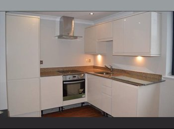 Spacious Double Room in newly renovated flat in Aldgate