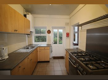 Great Room available, Close to Park Lane Interchange...