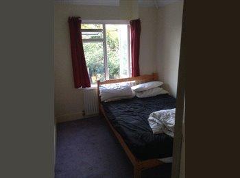 EasyRoommate UK - Double room in Chelmsford centre - Chelmsford, Chelmsford - £350 pcm