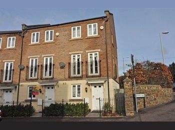 EasyRoommate UK - Lovely Double Room in St Leonard's - Exeter, Exeter - £400 pcm