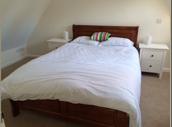 Fantastic 1 bed flat in quiet location for Mon-Fri let