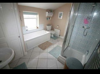 EasyRoommate UK - Large double room for rent in house share Cattedown close to town  - Plymouth, Plymouth - £350 pcm