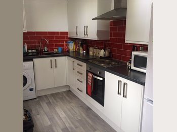 EasyRoommate UK - 2 females seeking a new professional house mate - Hunters Bar, Sheffield - £325 pcm