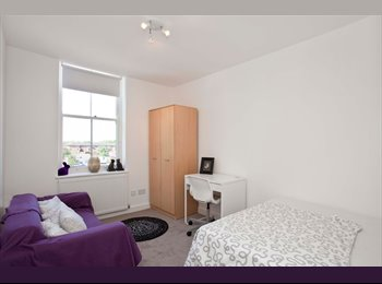 Gorgeous Room in Recently Refurbished Flat !