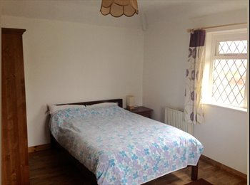 Comfortable Double Room to Rent.