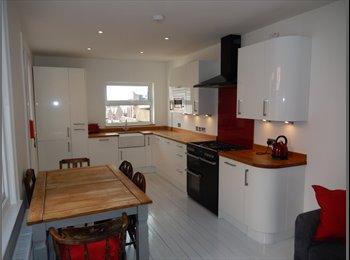 EasyRoommate UK - Stunning double room - St Thomas, Exeter - £425 pcm