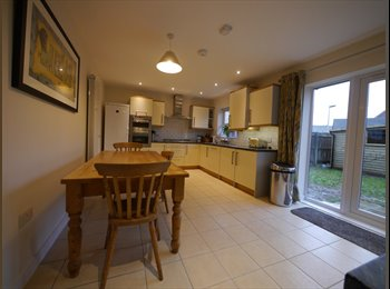 EasyRoommate UK - Professional House Share, St Thomas, Exeter, Exeter - £520 pcm