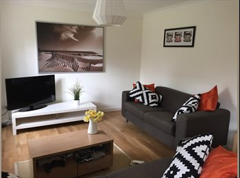 EasyRoommate UK - NEW TO READING? SO ARE WE! - Tilehurst, Reading - £575 pcm
