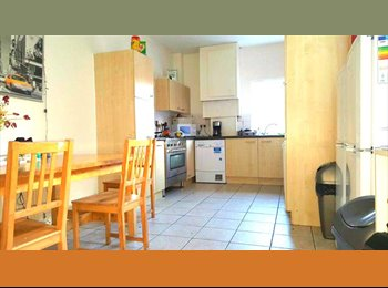 EasyRoommate UK - Friendly Homeshare With Great Links - Edgbaston, Birmingham - £395 pcm
