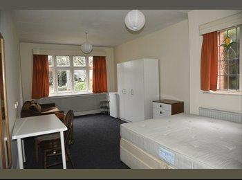 EasyRoommate UK - Huge Double Room in Queen's Park - Queens Park, Bournemouth - £700 pcm