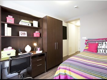 Pure Highbury room available for summer