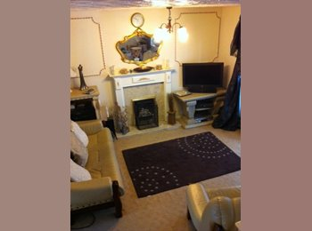 Single room in friendly comfy home