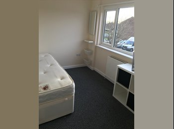 Ensuite bedrooms newly refurbished