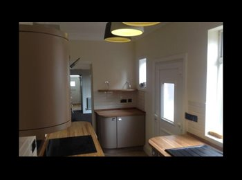 EasyRoommate UK - Cosy room in luxury charming victorian property, Stockland Green - £325 pcm