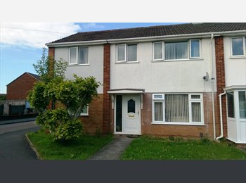 EasyRoommate UK - single room to rent exeter  - Alphington, Exeter - £400 pcm