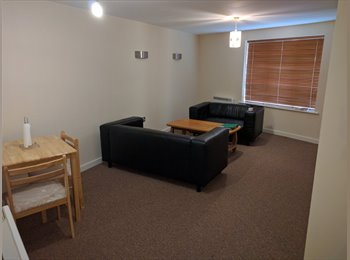 EasyRoommate UK - Nice 2 double bed room Flat rent in the heart of Newcastle Under Lyme  - Newcastle-under-Lyme, Newcastle under Lyme - £400 pcm